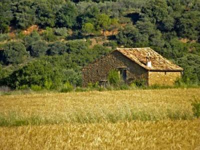 Casa_Selva_Sobrarbe_Aragon_alto